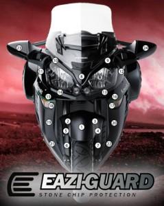 Eazi-Guard Background with Kawasaki GTR1400