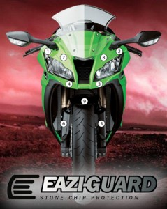 Eazi-Guard Background with ZX10R